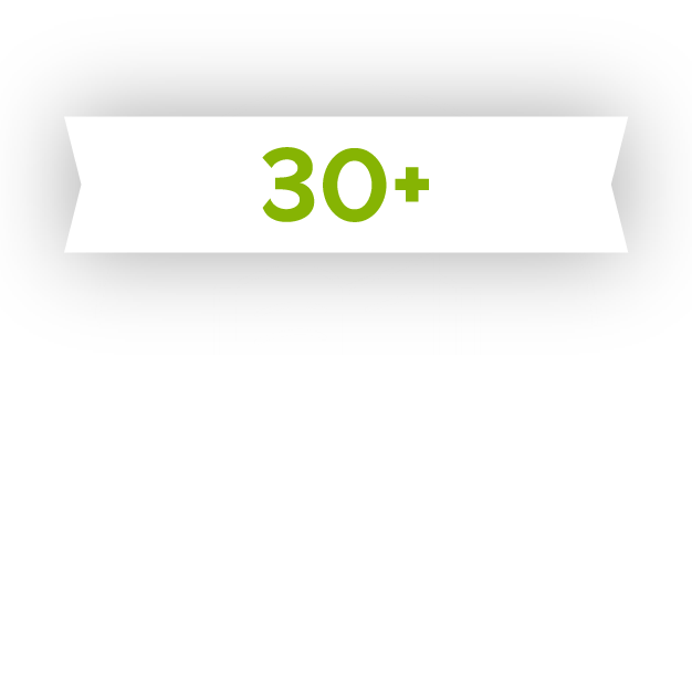 Icon showing over 30 years of experience as a language service provider.